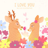 Deers romantic Stock Photography