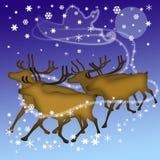Deers of Santa Royalty Free Stock Images