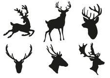 Deers Schattenbild lizenzfreie abbildung
