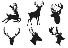 Deers silhouette Royalty Free Stock Photography