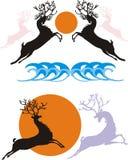 Deers and sun Stock Photos