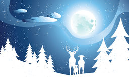 Deers in Winter Forest Royalty Free Stock Images