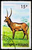 Defassa Waterbuck Kobus defassa, Animals serie, circa 1964. MOSCOW, RUSSIA - MAY 25, 2019: Postage stamp printed in Burundi shows Defassa Waterbuck Kobus defassa stock images