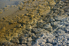 Defaulting earth at Salton Sea Stock Photography
