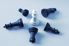 Defeated black chess pieces and consisting of white queen Royalty Free Stock Image