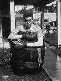 Defeated boxer in barrel outside Stock Photography