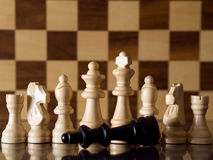 Defeated chess king Stock Images