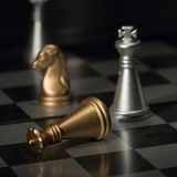 Defeated king in chess. King defeated at the chessboard (equipment - light brush Stock Image