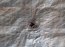 Defect hole on old rusty aged silver color coated plastic canvas. For agricultural and temporally use hanging in a farm as backdrop or background Stock Images