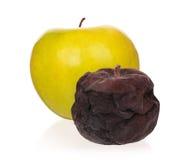 Defekt äpple Royaltyfri Fotografi