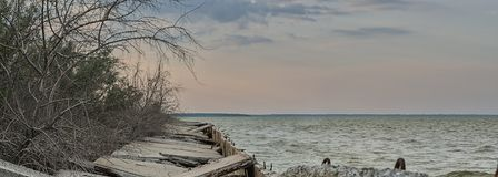 Defekte Betonplatten entlang dem Strand und trockene Bäume auf dem Asow-Meer, Ukraine Lizenzfreies Stockfoto