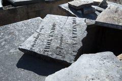 Defekte Krypta-breite Ernte Stockbilder