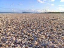Defekte Oberteile auf dem Strand mit Fokus und blauem Himmel stockbilder