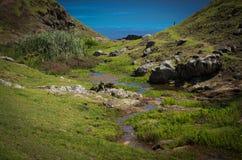 Defekter Brücken-Nebenfluss, Norfolk-Insel stockfotos