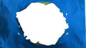 Defekter Commonwealth der Nationsflagge lizenzfreie abbildung