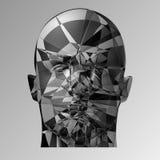 Defekter Kopf, Illustration 3d Das Spaltengesicht einer Person Lizenzfreie Stockfotos