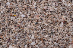 Defektes Oberteil auf Strand Lizenzfreies Stockbild