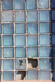 Defektes Quadrat des Glases in einem Blumenkasten Stockbilder