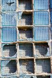 Defektes Quadrat des Glases in einem Blumenkasten Stockfotografie