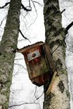 Defektes Vogelhaus Stockfotografie