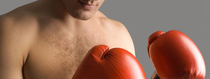 Defence. Male's body and hands in gloves for boxing Royalty Free Stock Images