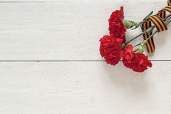 Defender of the Fatherland Day. Red carnations with st george ri. Bbons on the white background. Space for text stock image