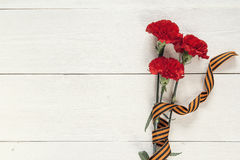 Defender of the Fatherland Day. Red carnations with st george ri. Red carnations with st george ribbons on the white background. Space for text. Defender of the royalty free stock images