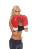 Defensa cardiia del boxeo Imagen de archivo libre de regalías