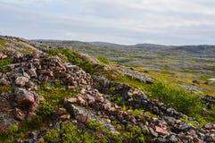 Defense line. Old German defense line in Kola, Musta-Tuntury royalty free stock photography