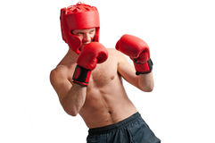 Defense of professional boxer on white. Defense of professional boxer with gloves and protective headgear isolated on white background stock images