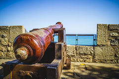 Defense, Spanish cannon pointing out to sea fortress. Beautiful bird with intense eyes and beautiful plumage Stock Photos