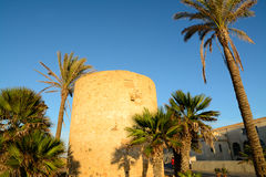 Defensive tower with palms Royalty Free Stock Images