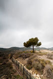 Defensivt stridighetpos. i Alcubierre, Spanien Arkivfoton