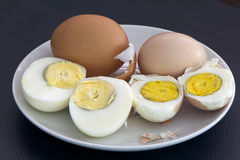 The deference between Poultry egg and Native egg Royalty Free Stock Images