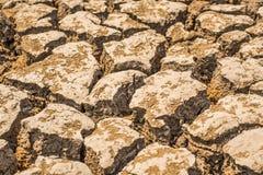 Deficit da água do solo da mola Fotografia de Stock