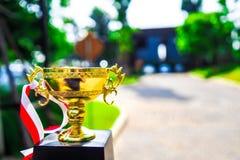 Defienda el trofeo de oro colocado en el camino con la copia verde del fondo imagenes de archivo