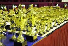 Defiende los trofeos visualizados en ceremonia de entrega de los premios Fotos de archivo libres de regalías