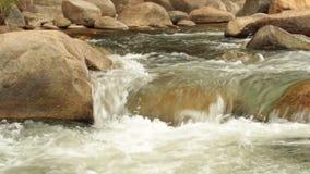 Definição alta da metragem da filtração da cena do rio da montanha vídeos de arquivo