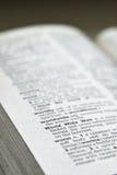 Definitie WWW in het woordenboek Stock Fotografie