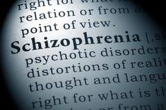 Definition of Schizophrenia. Fake Dictionary, Dictionary definition of the word Schizophrenia royalty free stock image