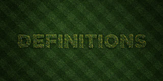 DEFINITIONS - fresh Grass letters with flowers and dandelions - 3D rendered royalty free stock image Royalty Free Stock Images