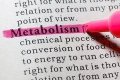 Definizione di metabolismo fotografia stock libera da diritti