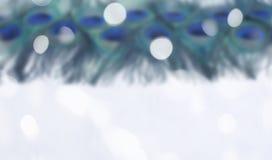 Defocus Abstrakcjonistyczny tło jaskrawi pawi piórka Zdjęcie Royalty Free