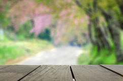 Defocus and Blur background of terrace wood and beautiful spring Royalty Free Stock Photos