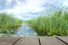 Defocus and blur image of terrace wood and Beautiful lake inside. Home background usage Royalty Free Stock Image