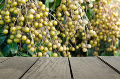 Defocus and blur image of terrace wood and Fresh longan. On branch for background usage Royalty Free Stock Images