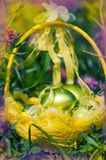 Defocus colorfull easter background. Egg in backet on meadow Royalty Free Stock Images
