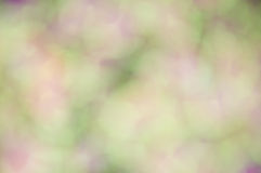 Defocus of green and violet light Stock Photography