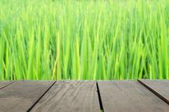 Defocus i plama wizerunek tarasowy drewno i piękni irlandczyków ryż Obraz Stock