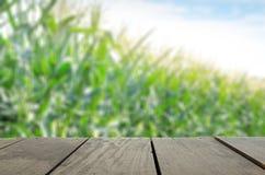 Defocus i plama wizerunek tarasowy drewno i Słodki Kukurydzany pole w s Zdjęcia Stock